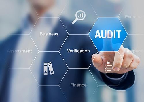 audit button-blog.jpg