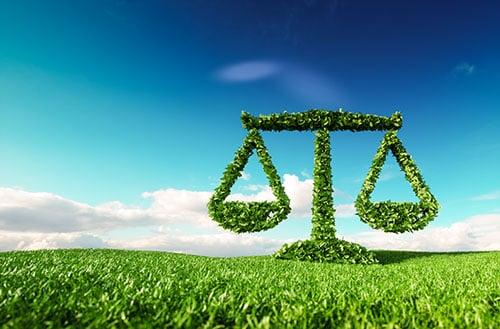 eco law - blog