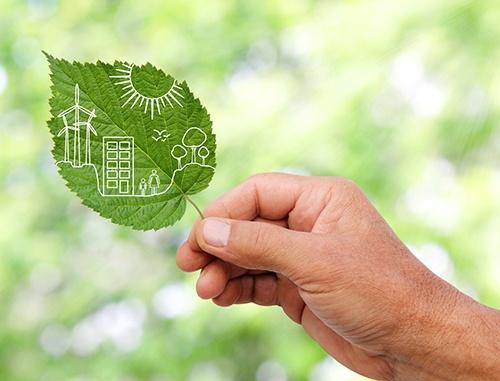 green leaf sustainability-blog
