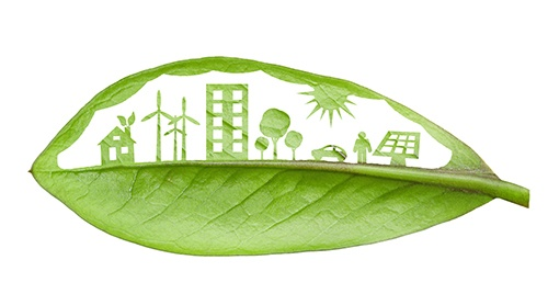 green living leaf2-blog.jpg