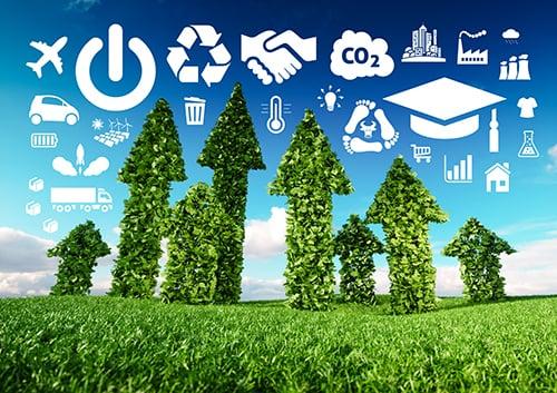 sustainable business development - blog